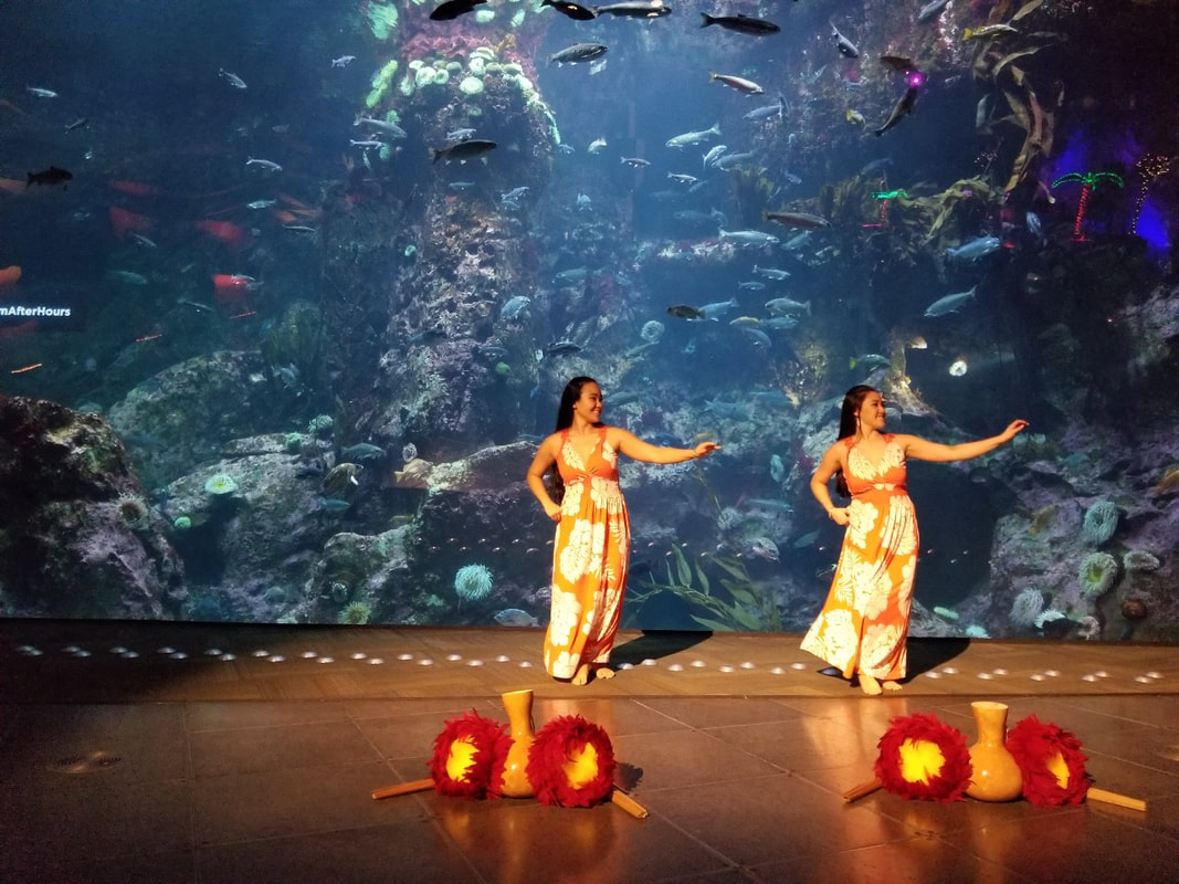 Photo of Hula performances in Seattle by the Polynesian Dance Troupe Huraiti Mana