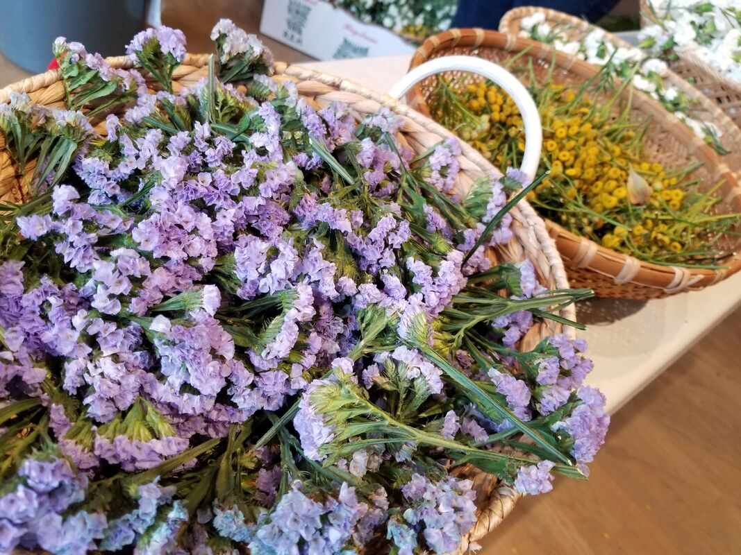 Photo of statice and yarrow, some of the many flowers featured at Kalei'okalani's Lei-Making Workshop in Seattle's Chinatown-International District Wing Luke Museum
